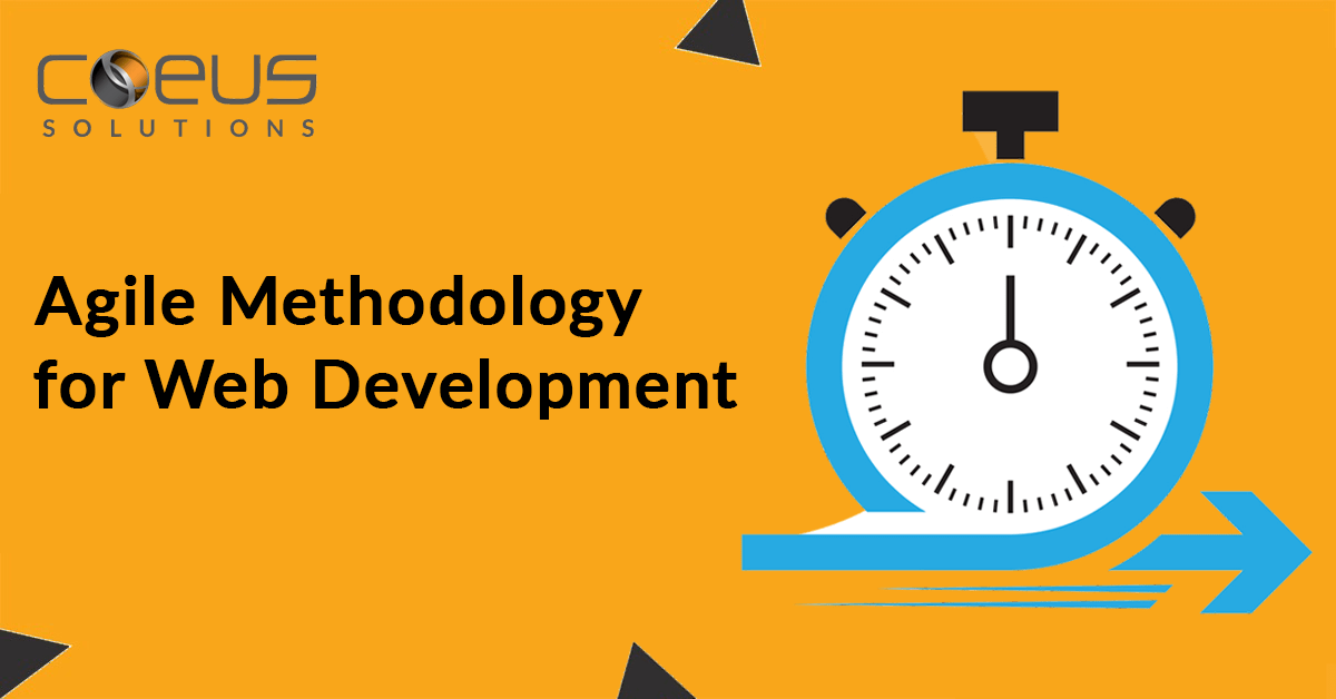 Agile Methodology for Web Development