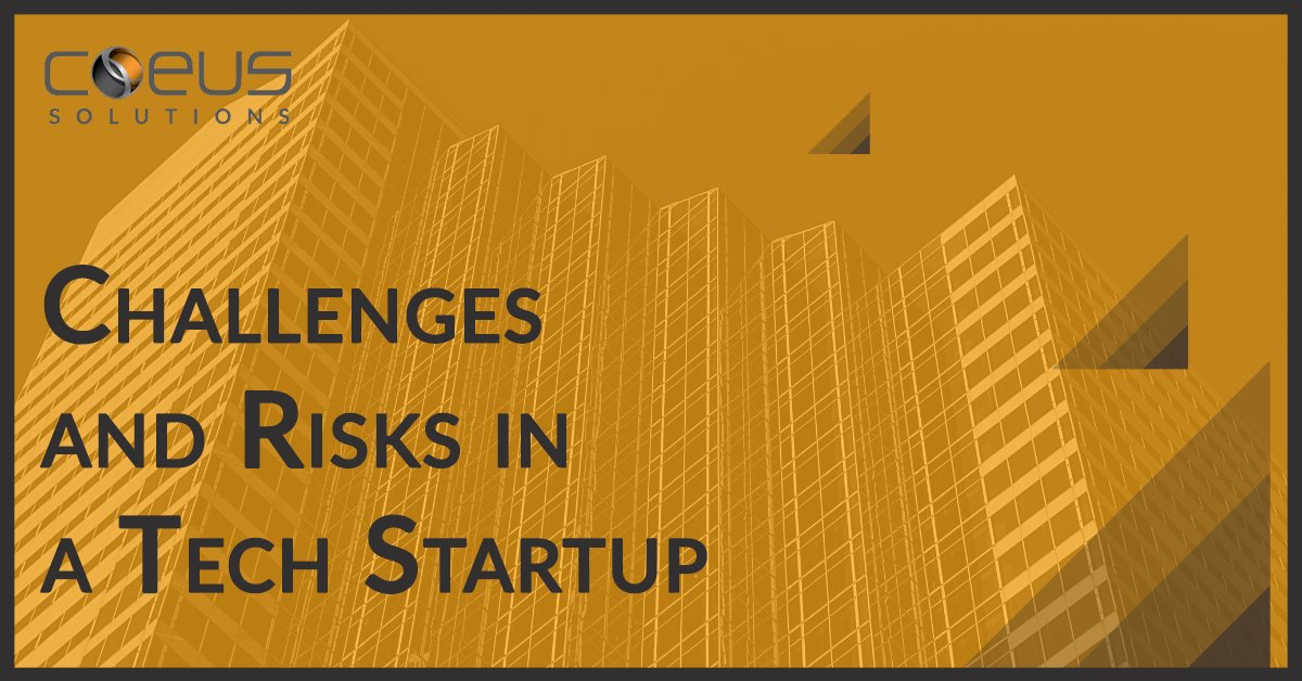 Challenges and Risks in a Tech Startup
